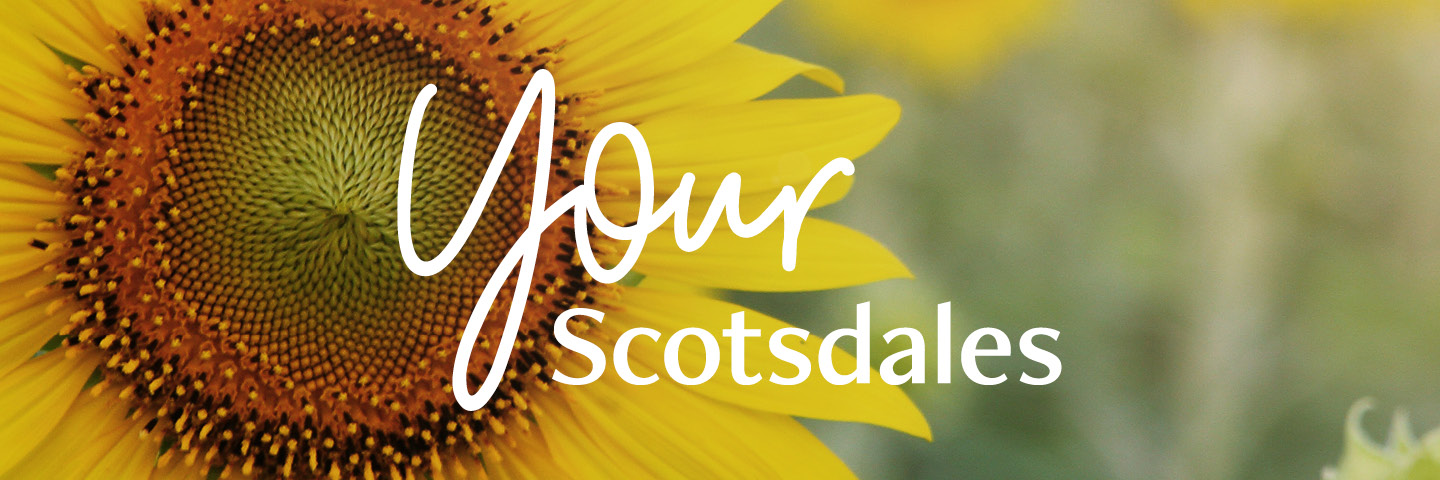 Your Scotsdales - Join our rewards club!