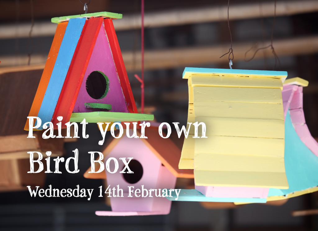 Paint your own birdbox