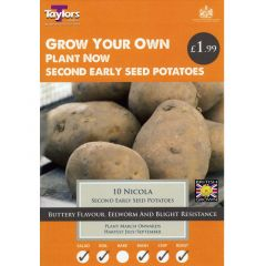 Nicola 10 Pack (Second early) - Taylor's Bulbs