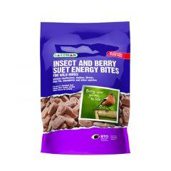 Gardman Insect & Berry Suet Energy Bites