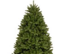 National Tree 4 1/2ft Newberry Spruce