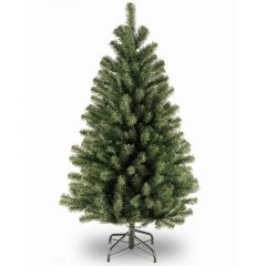 National Tree 4ft North Valley Spruce