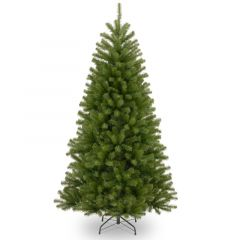 National Tree 5ft North Valley Spruce