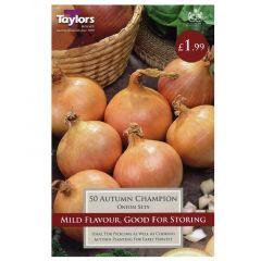 Onion Autumn Champion  - Taylor's Bulbs