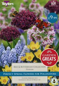 Bees & Butterflies Collection 70 Pack - Taylors Bulbs