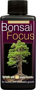 Bonsai Focus - 100ml