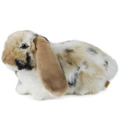 Living Nature Brown Dutch Lop Eared Rabbit