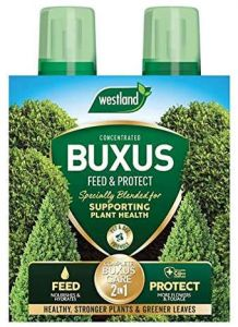 Westland 2in1 Feed & Protect Buxus - 500ml