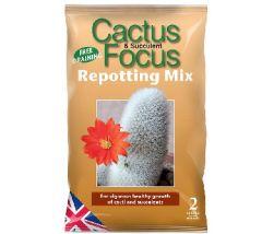 Cactus & Succulent Focus Repotting Mix - 2L