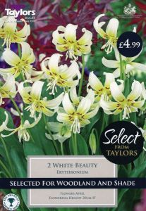 Erythronium White Beauty 2 Pack - Taylors Bulbs