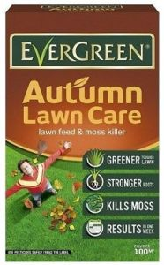 Evergreen Autumn Lawn Care 100M² + 20%