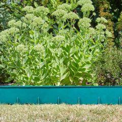 FlexEdge Green - Smart Garden