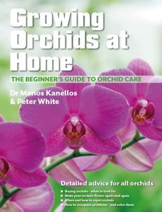 Growing Orchids at Home - The Beginners Guide to Orchid Care