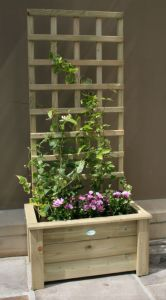Hutton Small Trellis Planter