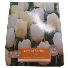 Beautiful Gardens Lemon Sorbet 15 Pack - Kapiteyn