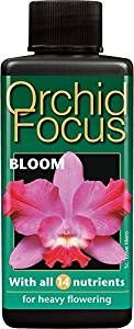 Orchid Focus Bloom - 100ml