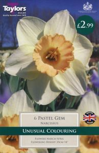 Narcissi Pastel Gem 6 Pack - Taylors Bulbs