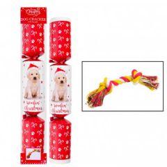 Christmas Pet Dog Cracker - RSW