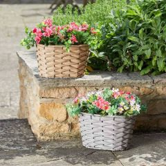 Petal Panniers  - Smart Garden