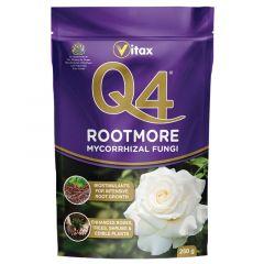 Q4 Rootmore - 250g