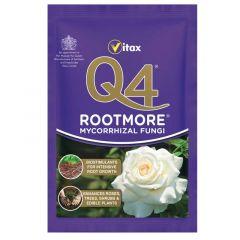 Q4 Rootmore - 60g