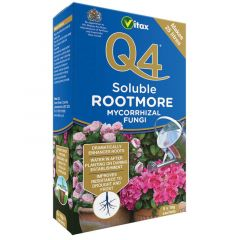 Q4 Rootmore Soluble - 5 x 10g