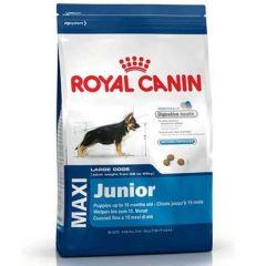 Royal Canin Dog Junior Maxi - 4kg