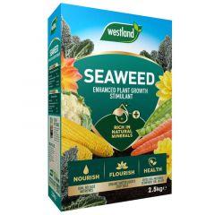 Westland Seaweed Enhanced Plant Food 2.5Kg