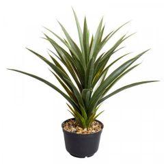 Spiky Sisal 62 cm - Smart Garden