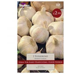 French Garlic Topadrome - Taylor's Bulbs