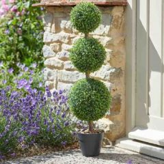 Trio Topiary Tree - 80cm
