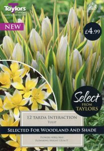 Tulip Tarda Interaction 6+ Selection