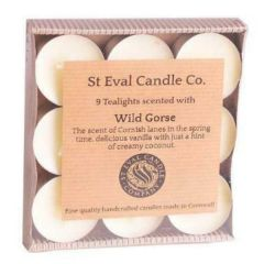 Wild Gorse Tea Lights - St Eval