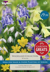Woodland Collection 50 Pack - Taylors Bulbs