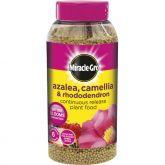 Miracle-Gro Azalea, Camellia & Rhododendron 1kg