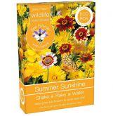 Bee Friends Summer Sunshine Seed Shaker 15g