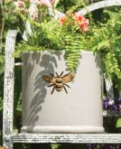 Woodlodge Wisteria Pot 23cm