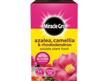 Miracle-Gro Azalea, Camellia & Rhododendron 1kg