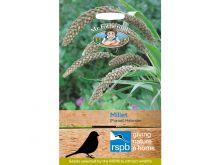 RSPB Millet (Foxtail) Hylander