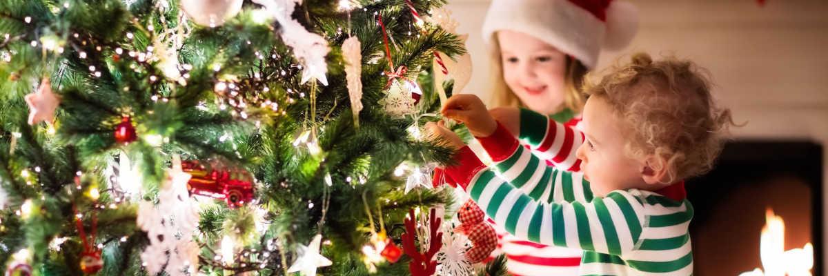 Shop Christmas Online Banner