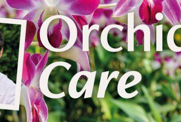 Orchid Talk 1440x480